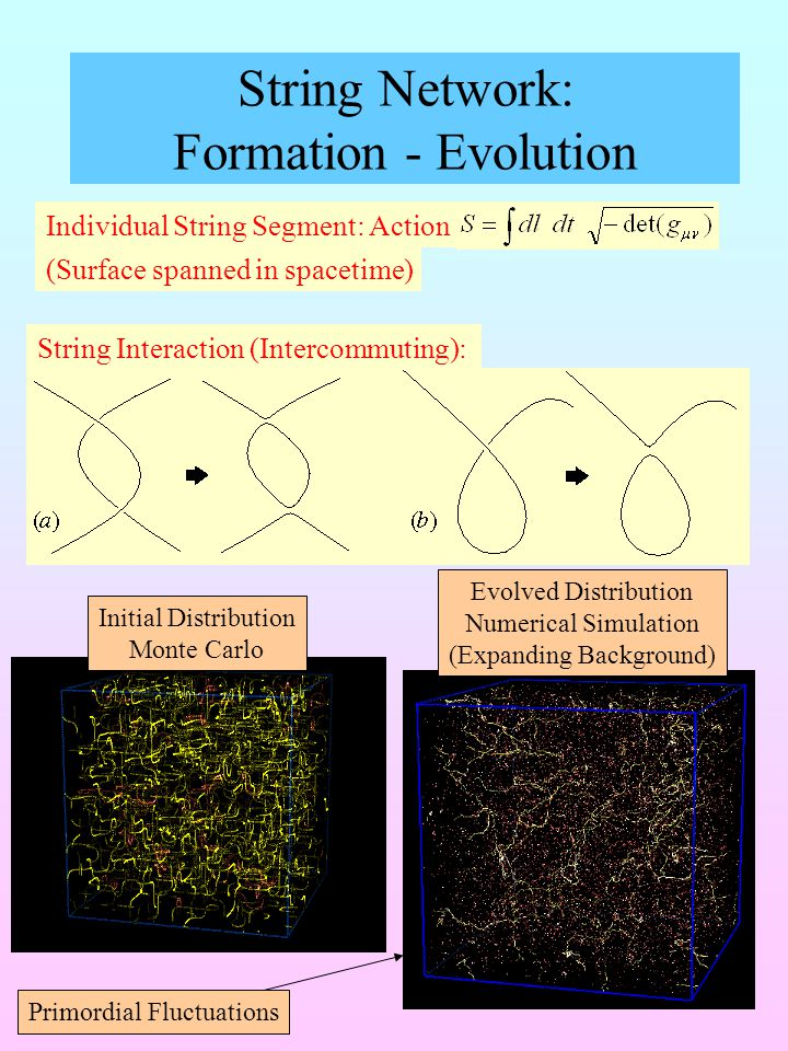 String Network: Formation - Evolution String Interaction (Intercommuting): Initial Distribution Monte Carlo Evolved Distribution Numerical Simulation (Expanding Background) Primordial Fluctuations Individual String Segment: Action (Surface spanned in spacetime)