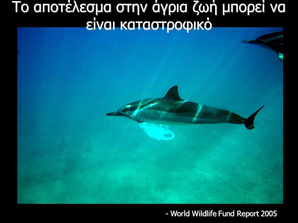 Το αποτέλεσμα στην άγρια ζωή μπορεί να είναι καταστροφικό - World Wildlife Fund Report 2005