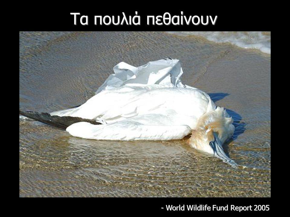 Τα πουλιά πεθαίνουν - World Wildlife Fund Report 2005