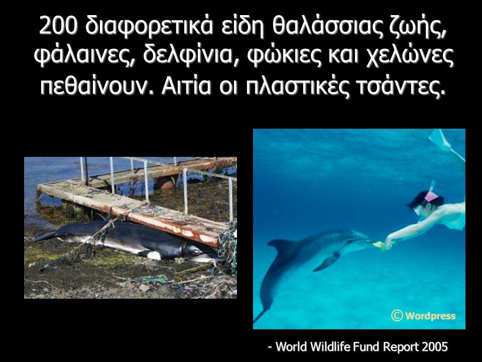 200 διαφορετικά είδη θαλάσσιας ζωής, φάλαινες, δελφίνια, φώκιες και χελώνες πεθαίνουν. Αιτία οι πλαστικές τσάντες. - World Wildlife Fund Report 2005