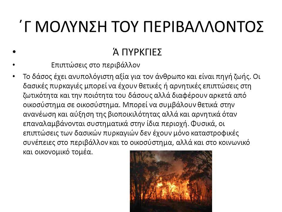 ΄Γ ΜΟΛΥΝΣΗ ΤΟΥ ΠΕΡΙΒΑΛΛΟΝΤΟΣ Ά ΠΥΡΚΓΙΕΣ Επιπτώσεις στο περιβάλλον Το δάσος έχει ανυπολόγιστη αξία για τον άνθρωπο και είναι πηγή ζωής. Οι δασικές πυρκ