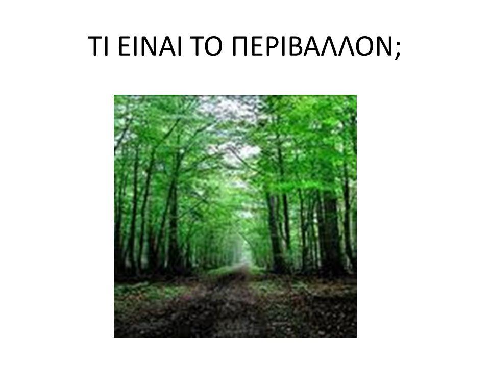 Α.Ορισμος του περιβαλλοντος Το περιβάλλον είναι πολύ σημαντικό για τη ζωή των ανθρώπων.