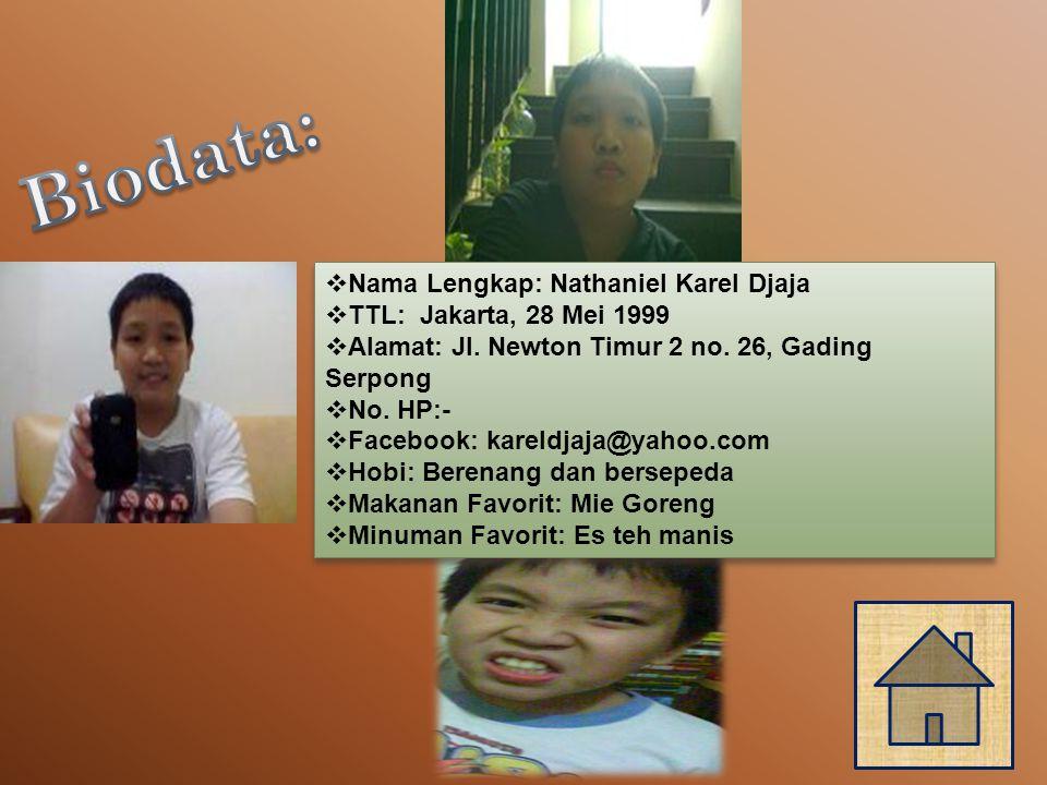  Nama Lengkap: Nathaniel Karel Djaja  TTL: Jakarta, 28 Mei 1999  Alamat: Jl.