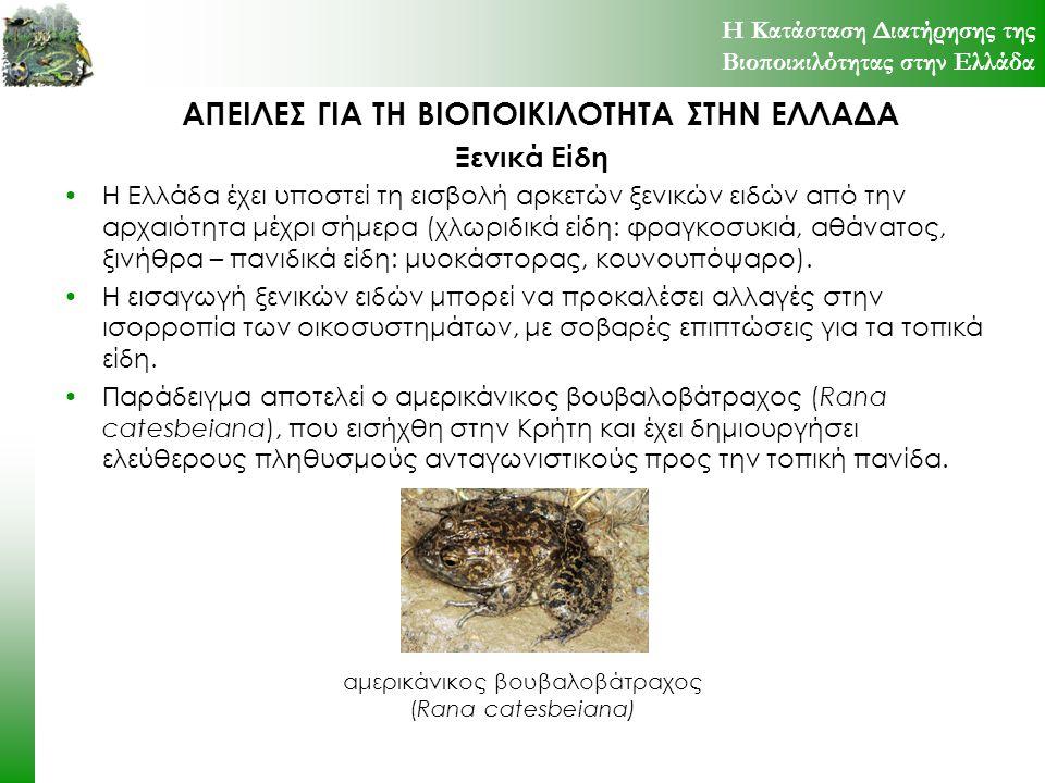 ΑΠΕΙΛΕΣ ΓΙΑ ΤΗ ΒΙΟΠΟΙΚΙΛΟΤΗΤΑ ΣΤΗΝ ΕΛΛΑΔΑ Η Ελλάδα έχει υποστεί τη εισβολή αρκετών ξενικών ειδών από την αρχαιότητα μέχρι σήμερα (χλωριδικά είδη: φραγ