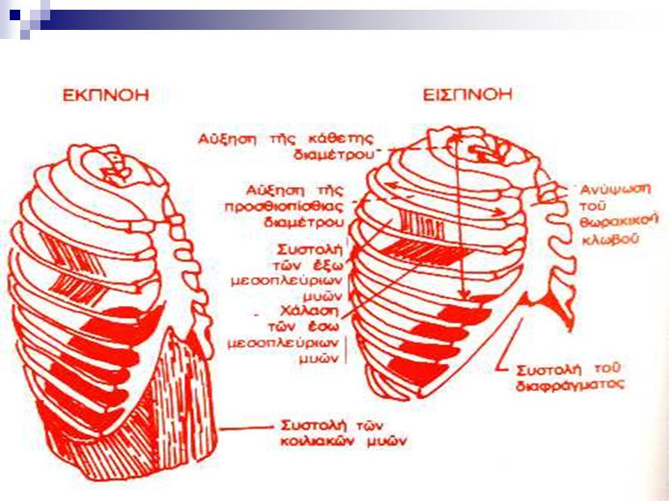 Βιοψία υπεζωκότα με βελόνα Ενδείκνυται για κάθε αδιάγνωστη εξιδρωματική πλευριτική συλλογή που έχει εξελισσόμενη πορεία ή αυξανόμενη LDH.
