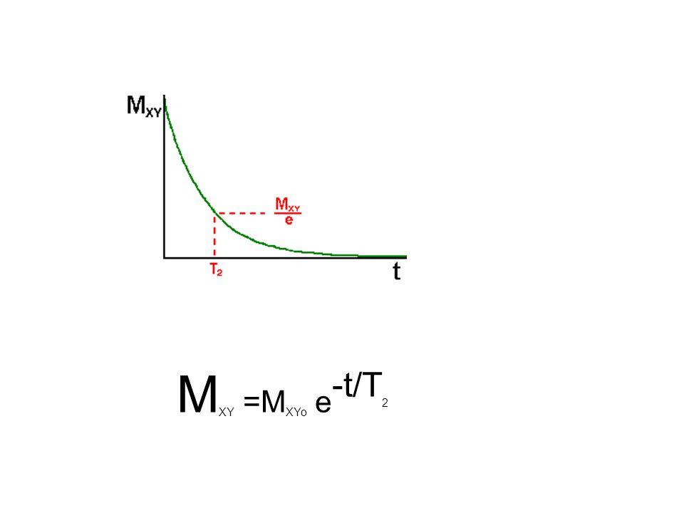 M XY =M XYo e -t/T 2