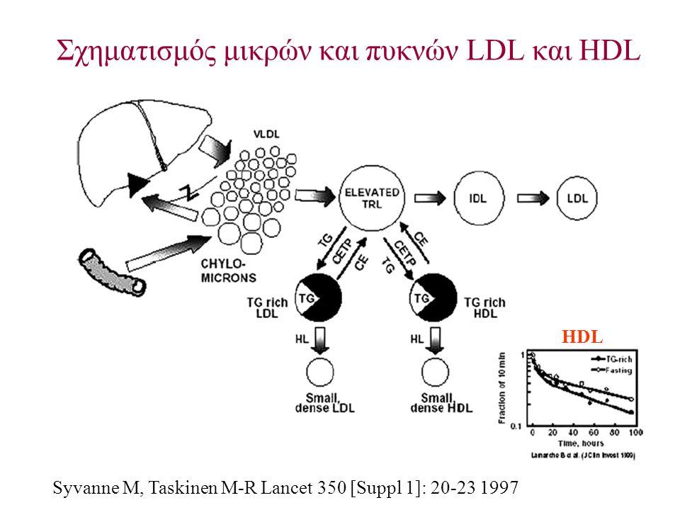 Σχηματισμός μικρών και πυκνών LDL και HDL Syvanne M, Taskinen M-R Lancet 350 [Suppl 1]: 20-23 1997 HDL