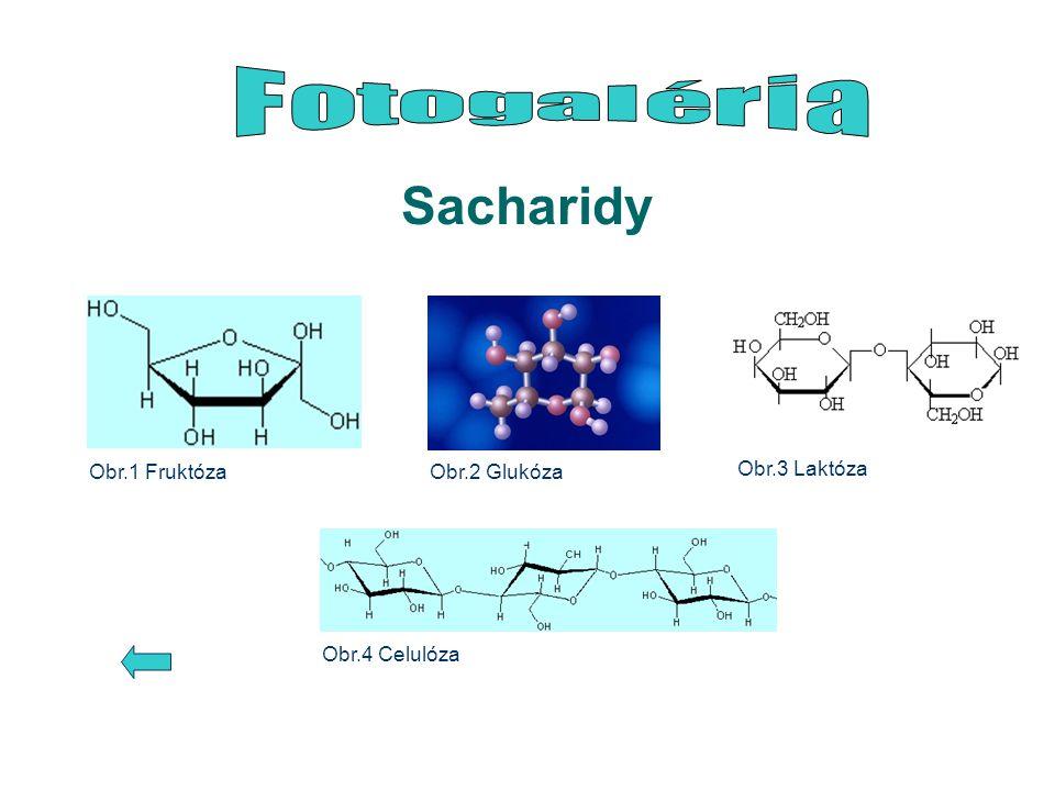 Sacharidy Obr.1 FruktózaObr.2 Glukóza Obr.3 Laktóza Obr.4 Celulóza