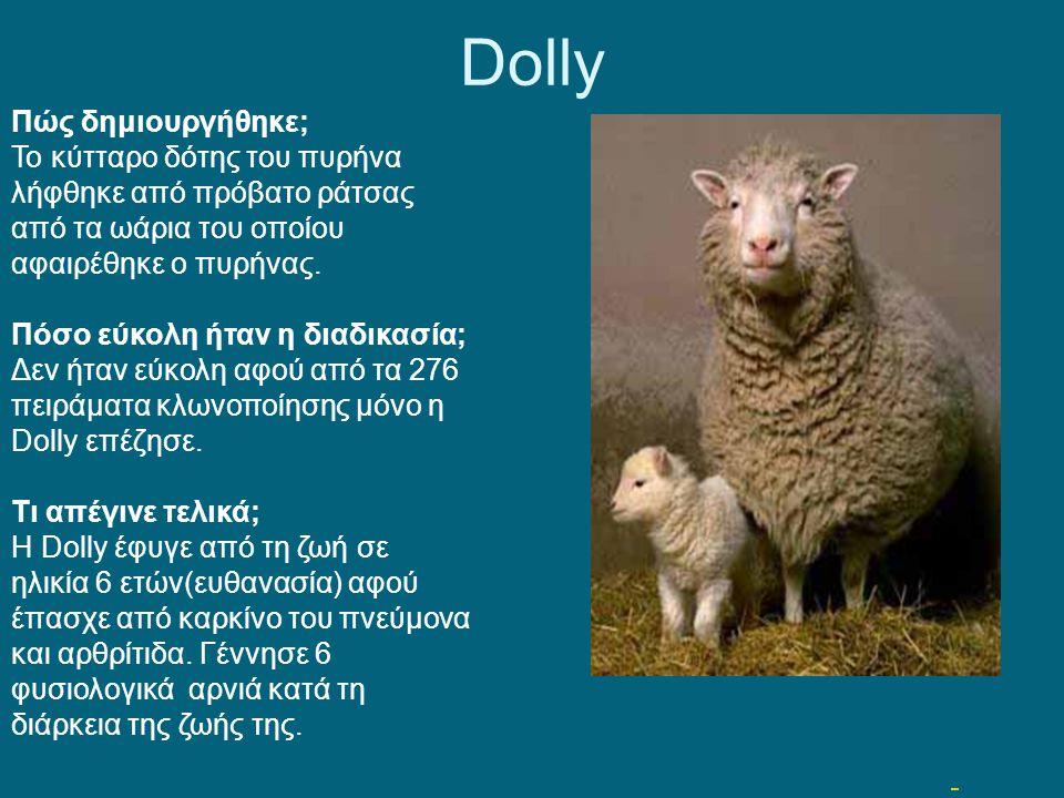 Ποιά ζώα έχουν κλωνοποιηθεί μέχρι σήμερα; Βόδι (Ινδικό) 2001 ΗΠΑ Αγελάδες 2001 (Βραζιλία) Γάτα 2001 (ΗΠΑ) Κουνέλι 2003 (Γαλλία) Μουλάρι 2003 (ΗΠΑ) Ελά
