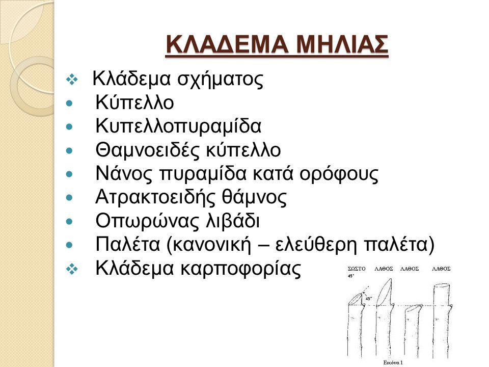 ΚΛΑΔΕΜΑ ΜΗΛΙΑΣ  Κλάδεμα σχήματος Κύπελλο Κυπελλοπυραμίδα Θαμνοειδές κύπελλο Νάνος πυραμίδα κατά ορόφους Ατρακτοειδής θάμνος Οπωρώνας λιβάδι Παλέτα (κανονική – ελεύθερη παλέτα)  Κλάδεμα καρποφορίας