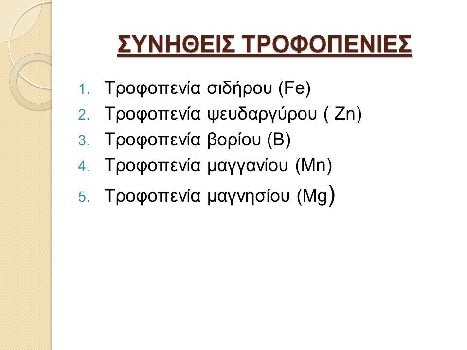 ΣΥΝΗΘΕΙΣ ΤΡΟΦΟΠΕΝΙΕΣ 1.Τροφοπενία σιδήρου (Fe) 2.