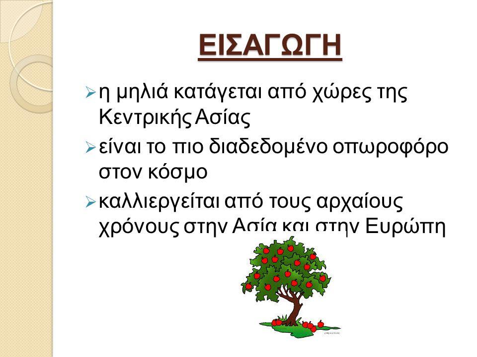 ΕΙΣΑΓΩΓΗ  η μηλιά κατάγεται από χώρες της Κεντρικής Ασίας  είναι το πιο διαδεδομένο οπωροφόρο στον κόσμο  καλλιεργείται από τους αρχαίους χρόνους στην Ασία και στην Ευρώπη