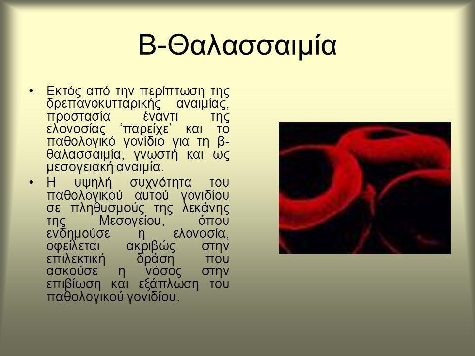 Β-Θαλασσαιμία Εκτός από την περίπτωση της δρεπανοκυτταρικής αναιμίας, προστασία έναντι της ελονοσίας 'παρείχε' και το παθολογικό γονίδιο για τη β- θαλασσαιμία, γνωστή και ως μεσογειακή αναιμία.