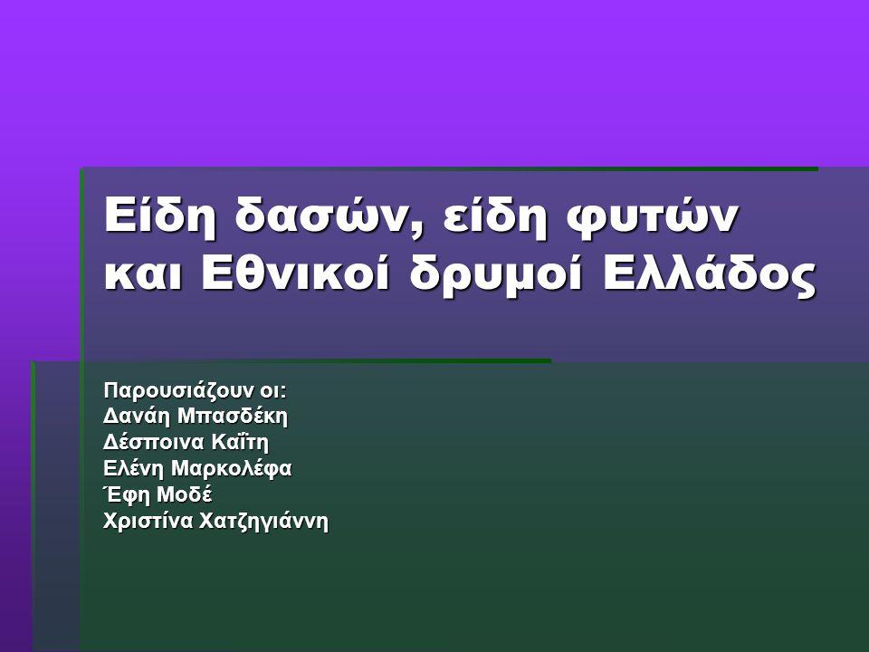 Είδη δασών, είδη φυτών και Εθνικοί δρυμοί Ελλάδος Παρουσιάζουν οι: Δανάη Μπασδέκη Δέσποινα Καΐτη Ελένη Μαρκολέφα Έφη Μοδέ Χριστίνα Χατζηγιάννη