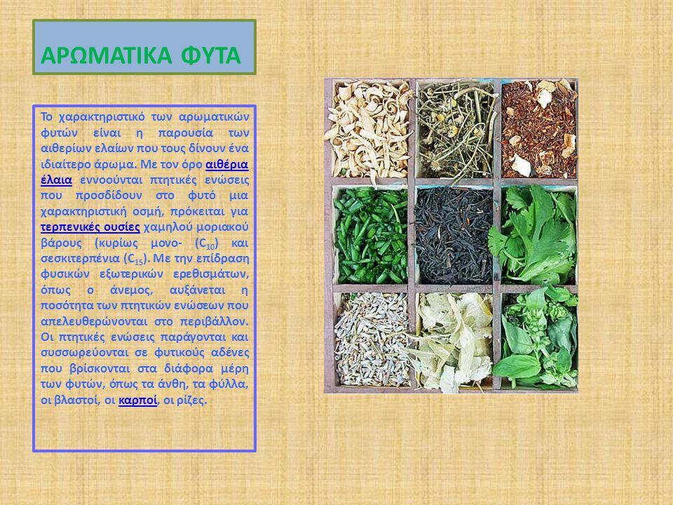 ΑΡΩΜΑΤΙΚΑ ΦΥΤΑ Το χαρακτηριστικό των αρωματικών φυτών είναι η παρουσία των αιθερίων ελαίων που τους δίνουν ένα ιδιαίτερο άρωμα.