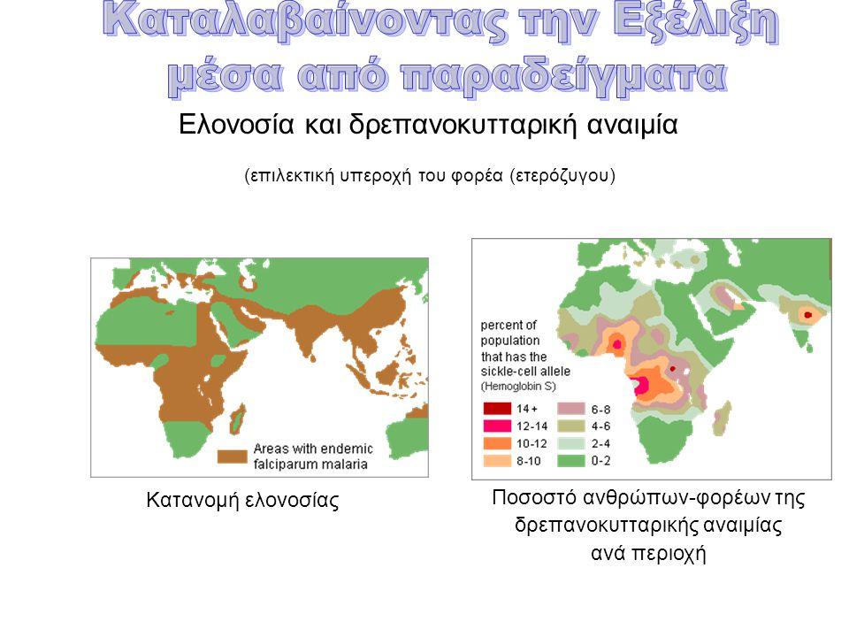 Ελονοσία και δρεπανοκυτταρική αναιμία (επιλεκτική υπεροχή του φορέα (ετερόζυγου) Κατανομή ελονοσίας Ποσοστό ανθρώπων-φορέων της δρεπανοκυτταρικής αναιμίας ανά περιοχή