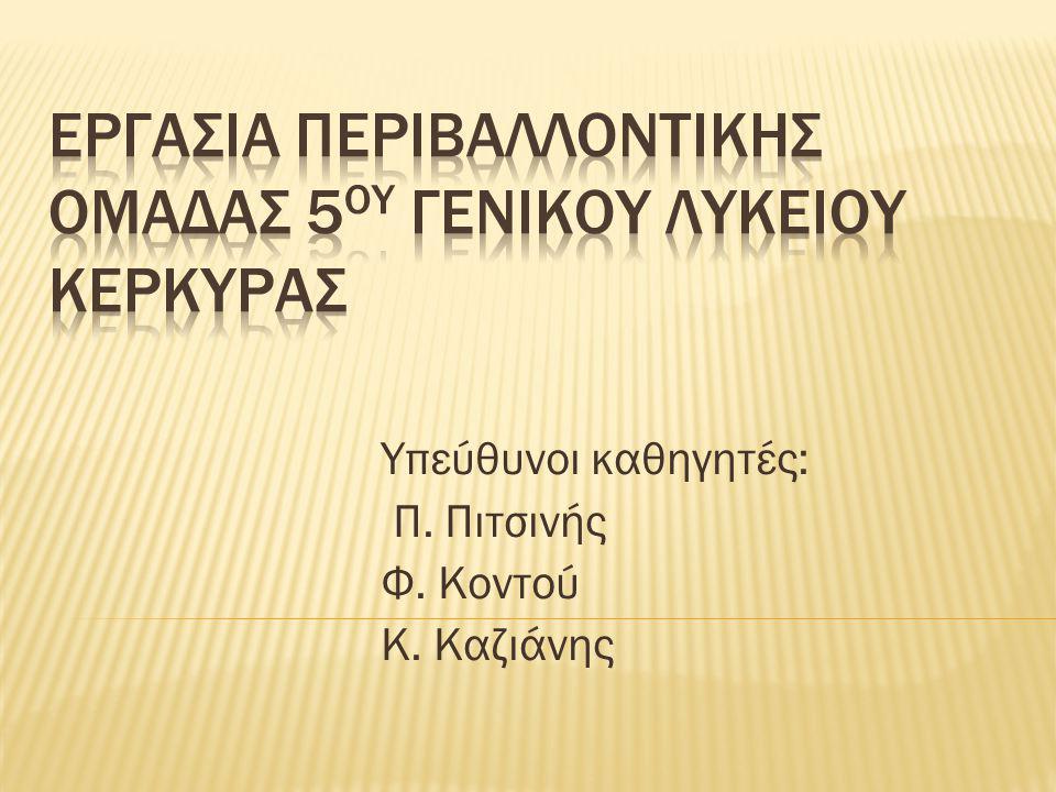 Υπεύθυνοι καθηγητές: Π. Πιτσινής Φ. Κοντού Κ. Καζιάνης