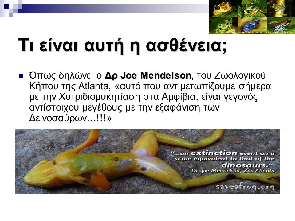 Τι είναι αυτή η ασθένεια; Δρ Joe Mendelson Όπως δηλώνει ο Δρ Joe Mendelson, του Ζωολογικού Κήπου της Atlanta, «αυτό που αντιμετωπίζουμε σήμερα με την