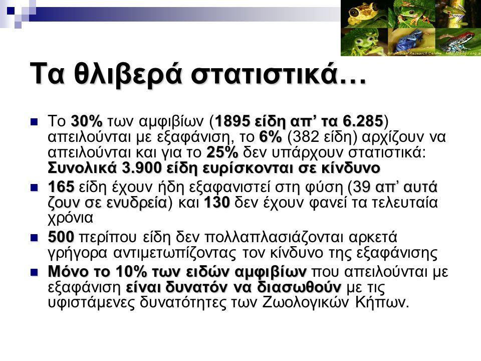Τα θλιβερά στατιστικά… 30%1895 είδη απ' τα 6.285 6% 25% Συνολικά 3.900 είδη ευρίσκονται σε κίνδυνο Το 30% των αμφιβίων (1895 είδη απ' τα 6.285) απειλο