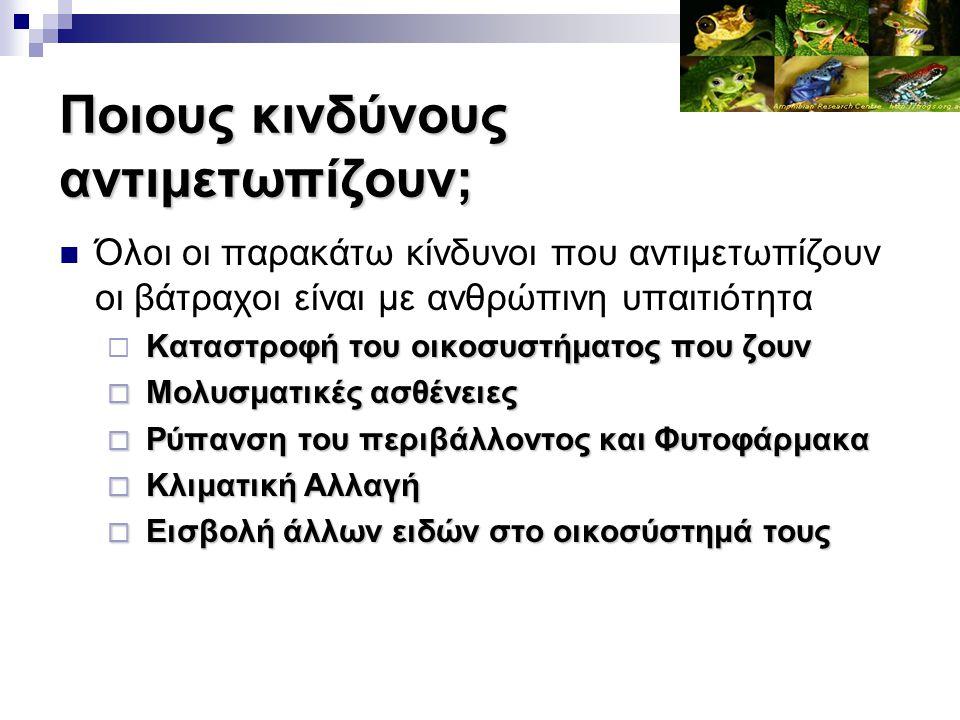 Ποιους κινδύνους αντιμετωπίζουν; Όλοι οι παρακάτω κίνδυνοι που αντιμετωπίζουν οι βάτραχοι είναι με ανθρώπινη υπαιτιότητα Καταστροφή του οικοσυστήματος