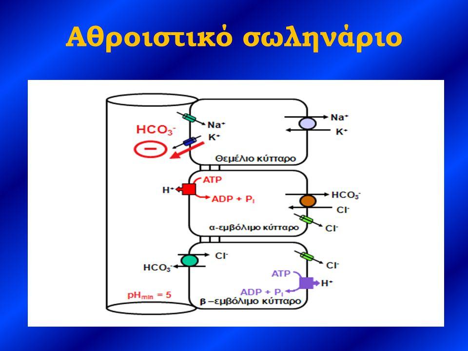 Συμπεράσματα Στην εγγύς ΝΣΟ είναι μειωμένη η επαναρρόφηση των HCO 3 - στα εγγύς σωληνάρια, με αποτέλεσμα στην αρχή το pH των ούρων να είναι υψηλό (>6,5) Στην εγγύς ΝΣΟ όταν τα HCO 3 - στον ορό φθάσουν γύρω στα 12- 18 mEq/L σταθεροποιούνται και τα ούρα γίνονται όξινα (pH<5,0) Η βαρύτερη μορφή ΝΣΟ είναι η άπω και έχει τις σοβαρότερες επιπλοκές Στην άπω ΝΣΟ υπάρχει μειωμένη ικανότητα των σωληναρίων να επιτύχουν το μέγιστο επίπεδο οξινοποίησης των ούρων, με αποτέλεσμα να μην αποβάλλεται το ημερήσιο φορτίο οξέων Τα 2/3 των ασθενών με άπω ΝΣΟ παρουσιάζουν νεφρολιθίαση ή νεφρασβέστωση (εξαιτίας υπερασβεστιουρίας, υπερφωσφατουρίας και αλκαλικών ούρων) Όταν στην άπω ΝΣΟ η υποκαλιαιμία είναι σημαντικού βαθμού, μπορεί να επιδεινωθεί με τη χορήγηση HCO 3 - (προηγείται η αποκατάσταση των επιπέδων των K + )