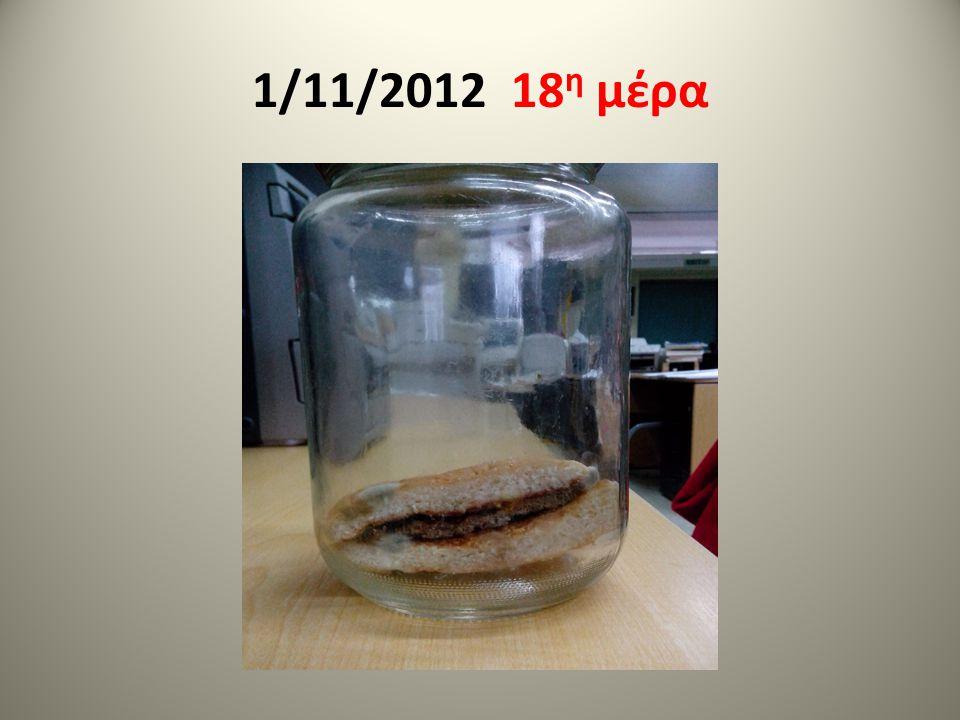 1/11/2012 18 η μέρα