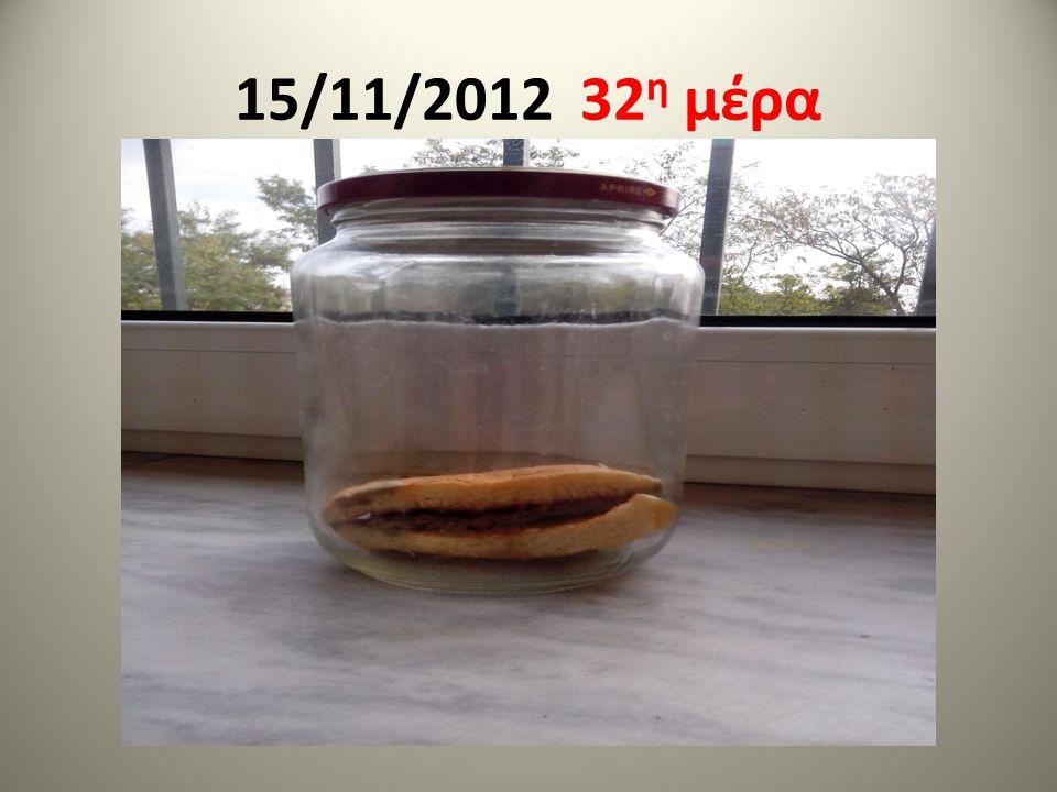 15/11/2012 32 η μέρα