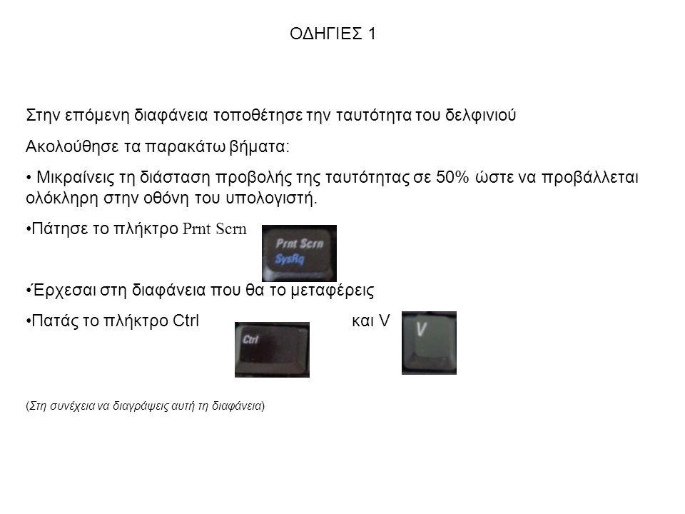 Στην επόμενη διαφάνεια τοποθέτησε την ταυτότητα του δελφινιού Ακολούθησε τα παρακάτω βήματα: Μικραίνεις τη διάσταση προβολής της ταυτότητας σε 50% ώστε να προβάλλεται ολόκληρη στην οθόνη του υπολογιστή.