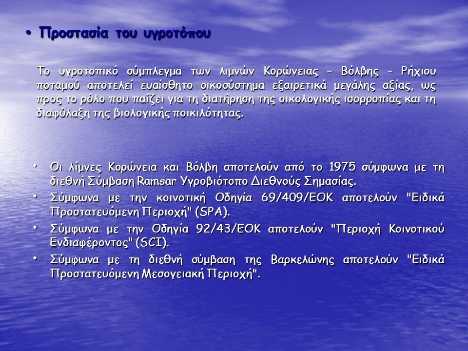 Οι λίμνες Κορώνεια και Βόλβη αποτελούν από το 1975 σύμφωνα με τη διεθνή Σύμβαση Ramsar Υγροβιότοπο Διεθνούς Σημασίας. Οι λίμνες Κορώνεια και Βόλβη απο