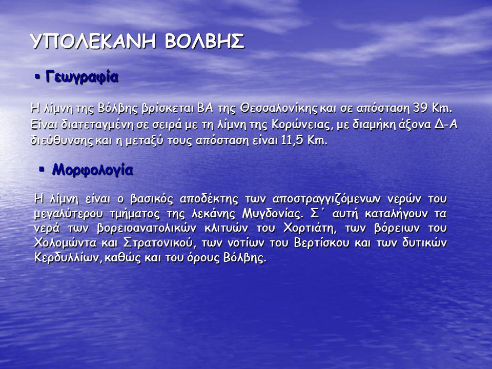 ΥΠΟΛΕΚΑΝΗ ΒΟΛΒΗΣ Η λίμνη της Βόλβης βρίσκεται ΒΑ της Θεσσαλονίκης και σε απόσταση 39 Km. Είναι διατεταγμένη σε σειρά με τη λίμνη της Κορώνειας, με δια