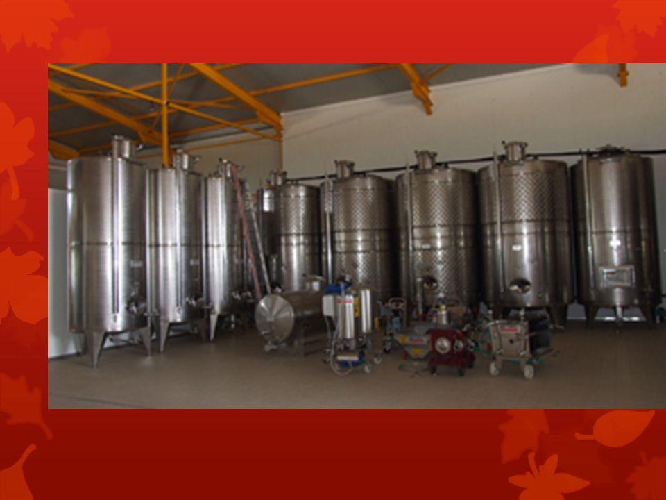 Fume: Όρος (επίθετο) που χρησιμοποιείται αδόκιμα για να υποδηλώσει ότι ένα κρασί, κατά κύριο λόγο λευκό, έχει περάσει από δρύινο βαρέλι.