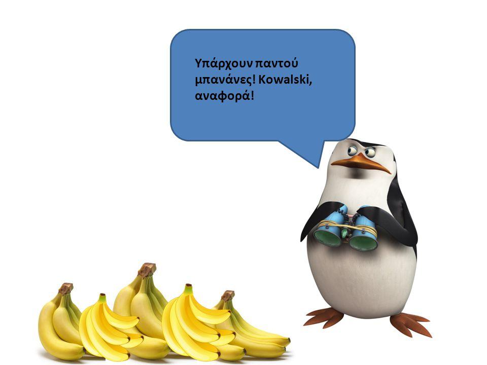 Υπάρχουν παντού μπανάνες! Kowalski, αναφορά!