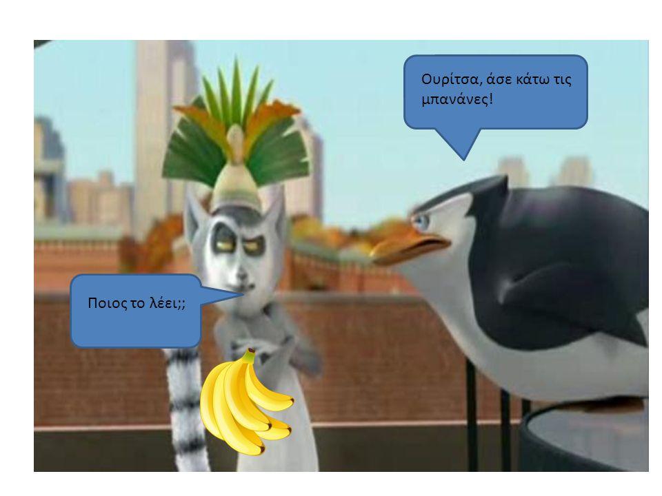 Ουρίτσα, άσε κάτω τις μπανάνες! Ποιος το λέει;;