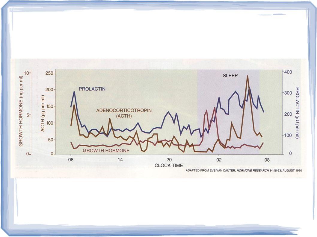 Θεωρίες για την ύπαρξη του ΜΗ-REM ύπνου Ανάπαυση – αποκατάσταση ενεργειακού ισοζυγίου Υποχρεωτική προστασία σε ώρες που η δραστηριότητα είναι επικίνδυνη Χρησιμότητα στην ανάπτυξη – ρύθμιση ενδοκρινικών λειτουργιών Επαναφορά των νευρομεταβιβαστικών συστημάτων στην κατάσταση της «μέσης γραμμής» Απαραίτητος για την δημιουργία περιβάλλοντος για να εκδηλωθεί ο ύπνος REM (ο ύπνος ως «φύλακας του ονείρου»)