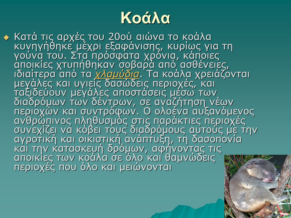 Κοάλα  Κατά τις αρχές του 20ού αιώνα το κοάλα κυνηγήθηκε μέχρι εξαφάνισης, κυρίως για τη γούνα του. Στα πρόσφατα χρόνια, κάποιες αποικίες χτυπήθηκαν