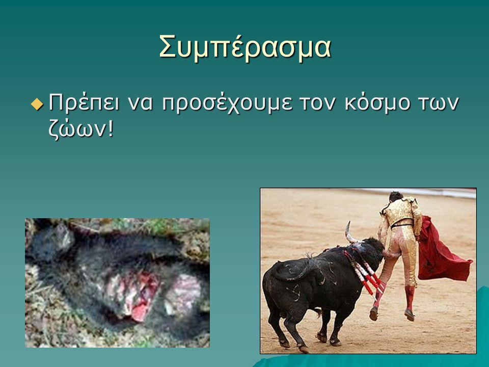 Συμπέρασμα ΠΠΠΠρέπει να προσέχουμε τον κόσμο των ζώων!