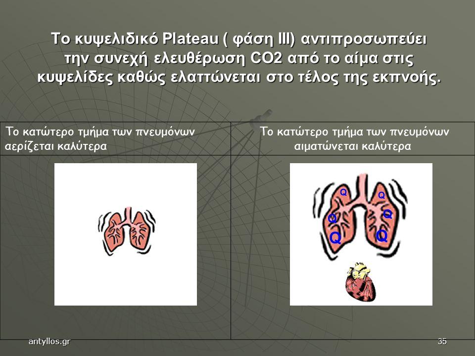 35 Το κυψελιδικό Plateau ( φάση III) αντιπροσωπεύει την συνεχή ελευθέρωση CO2 από το αίμα στις κυψελίδες καθώς ελαττώνεται στο τέλος της εκπνοής. Το κ