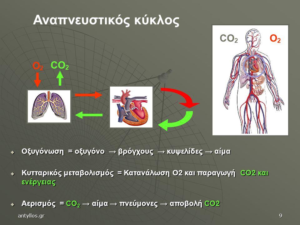  Οξυγόνωση = οξυγόνο → βρόγχους → κυψελίδες → αίμα  Κυτταρικός μεταβολισμός = Κατανάλωση Ο2 και παραγωγή CO2 και ενέργειας  Αερισμός = CO 2 → αίμα → πνεύμονες → αποβολή CO2 O2O2 CO 2 O2O2 Αναπνευστικός κύκλος antyllos.gr9