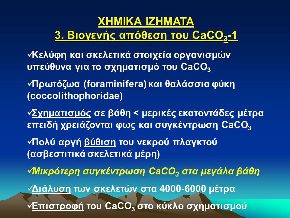 ΧΗΜΙΚΑ ΙΖΗΜΑΤΑ 3. Βιογενής απόθεση του CaCO 3 -1 Κελύφη και σκελετικά στοιχεία οργανισμών υπεύθυνα για το σχηματισμό του CaCO 3 Πρωτόζωα (foraminifera