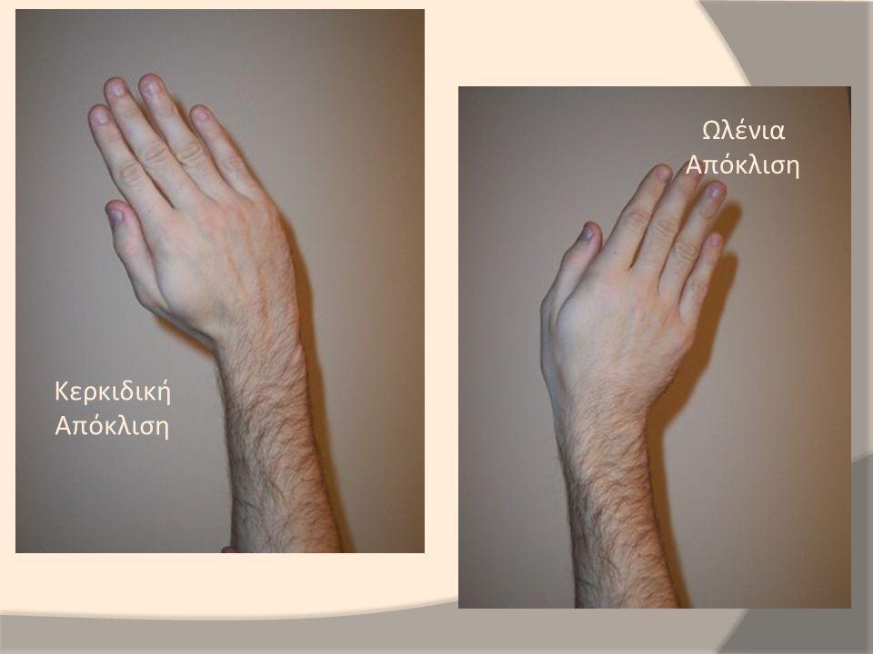 Έκταση Δακτύλων Κάμψη Δακτύλων Προσαγωγή Δακτύλων Απαγωγή δακτύλων