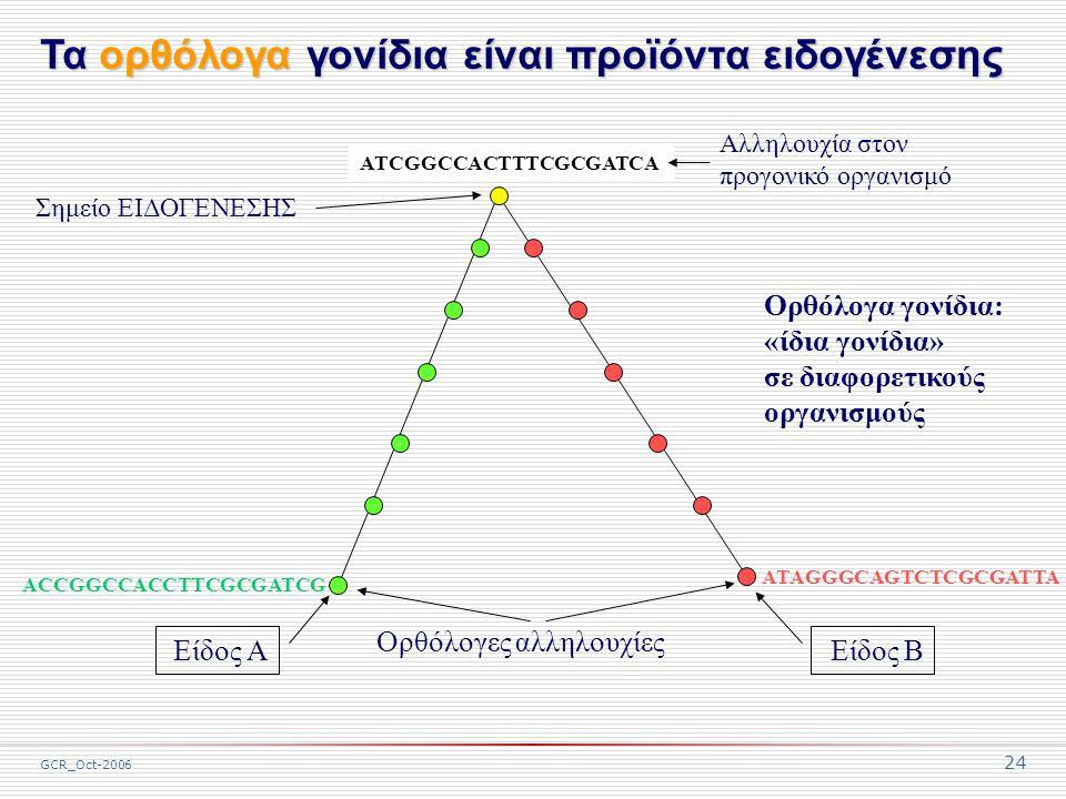 GCR_Oct-2006 24 ACCGGCCACCTTCGCGATCG ATCGGCCACTTTCGCGATCA ATAGGGCAGTCTCGCGATTA Αλληλουχία στον προγονικό οργανισμό Ορθόλογες αλληλουχίες Σημείο ΕΙΔΟΓΕΝΕΣΗΣ Είδος ΑΕίδος Β Ορθόλογα γονίδια: «ίδια γονίδια» σε διαφορετικούς οργανισμούς Τα ορθόλογα γονίδια είναι προϊόντα ειδογένεσης