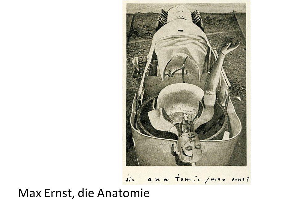 Max Ernst, die Anatomie