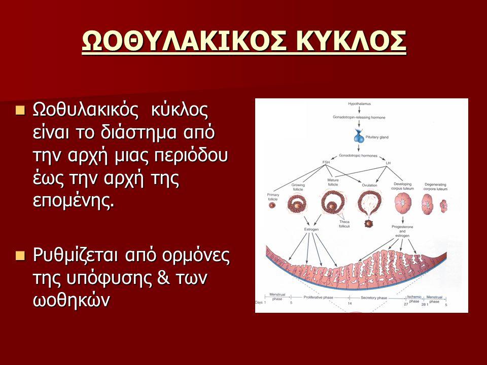 ΩΟΘΥΛΑΚΙΚΟΣ ΚΥΚΛΟΣ Ωοθυλακικός κύκλος είναι το διάστημα από την αρχή μιας περιόδου έως την αρχή της επομένης. Ωοθυλακικός κύκλος είναι το διάστημα από