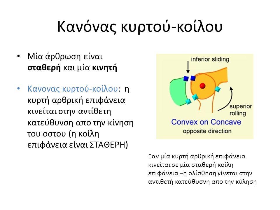 Κανόνας κυρτού-κοίλου Μία άρθρωση είναι σταθερή και μία κινητή Κανονας κυρτού-κοίλου: η κυρτή αρθρική επιφάνεια κινείται στην αντίθετη κατεύθυνση απο