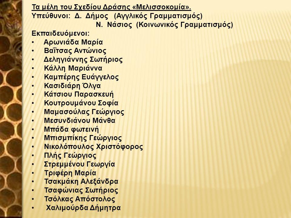 Τα μέλη του Σχεδίου Δράσης «Μελισσοκομία». Υπεύθυνοι: Δ. Δήμος (Αγγλικός Γραμματισμός) Ν. Νάσιος (Κοινωνικός Γραμματισμός) Εκπαιδευόμενοι: Αρωνιάδα Μα