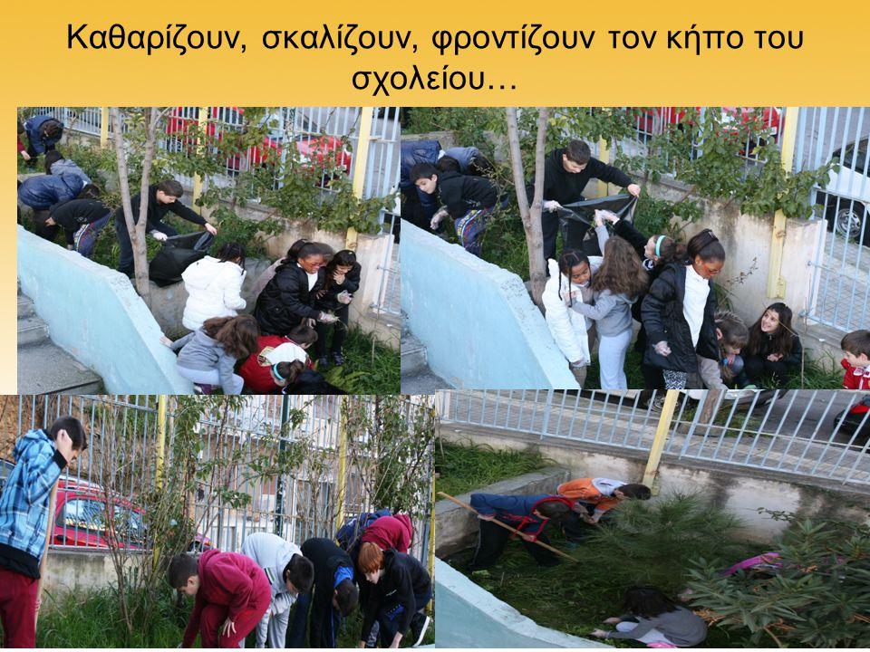 Καθαρίζουν, σκαλίζουν, φροντίζουν τον κήπο του σχολείου…