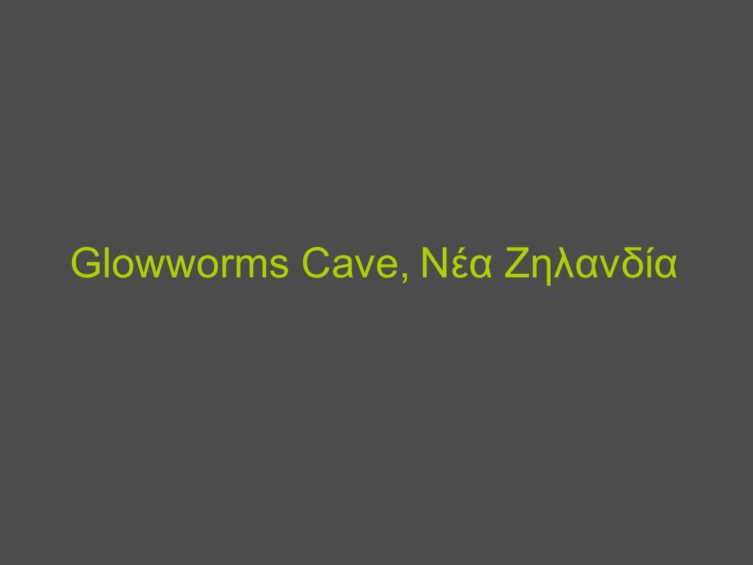 Glowworms Cave, Νέα Ζηλανδία
