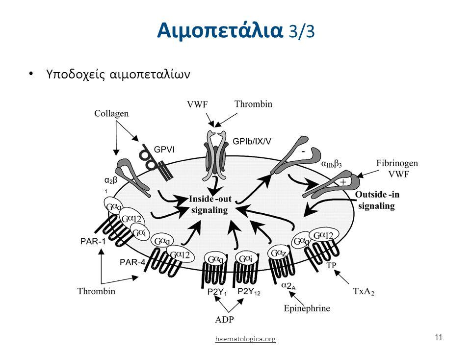 Υποδοχείς αιμοπεταλίων 11 haematologica.org Αιμοπετάλια 3/3