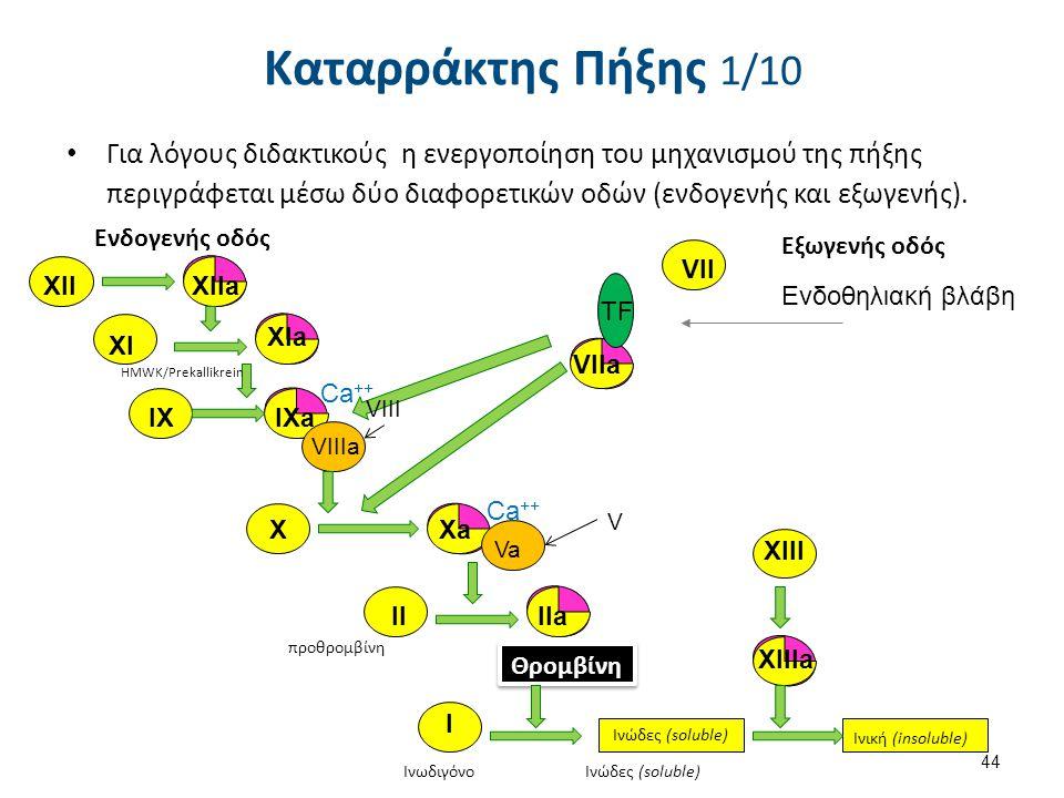 Καταρράκτης Πήξης 1/10 Για λόγους διδακτικούς η ενεργοποίηση του μηχανισμού της πήξης περιγράφεται μέσω δύο διαφορετικών οδών (ενδογενής και εξωγενής)