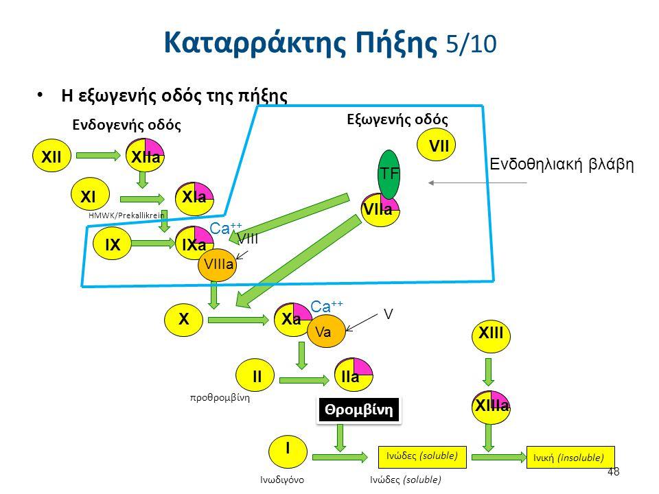 VIIa Η εξωγενής οδός της πήξης XIIXIIa XIaXI IX IXa VIIIa X Xa Va HMWK/Prekallikrein προθρομβίνη Θρομβίνη XIII XIIIa Ινωδιγόνο Ινώδες (soluble) Ινική